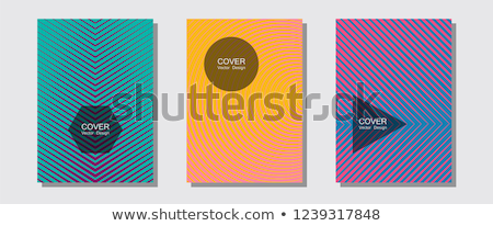 abstract colorful multiple business templates  Stock photo © pathakdesigner