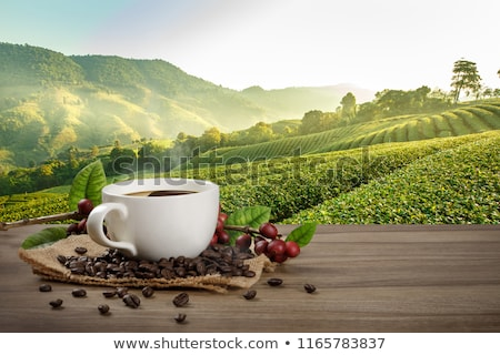 горячей природного кофе чашку кофе ложку изолированный Сток-фото © olgaaltunina