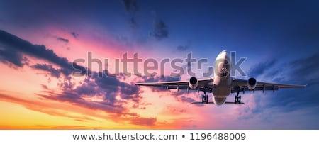 Transporte avião pôr do sol militar árvore linha Foto stock © Gordo25