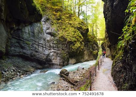 hdr · hegy · folyam · Alpok · Németország · fa - stock fotó © haraldmuc