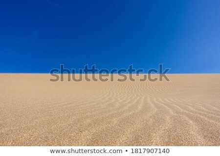 Taroa Sand Dune Stock photo © jkraft5