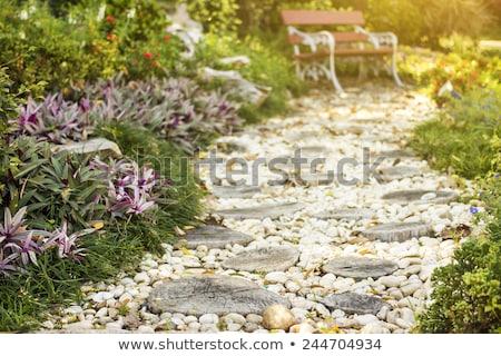 Stone path on green grass Stock photo © RuslanOmega