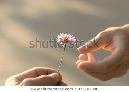 давать · человека · слово · подарок · настоящее - Сток-фото © nito