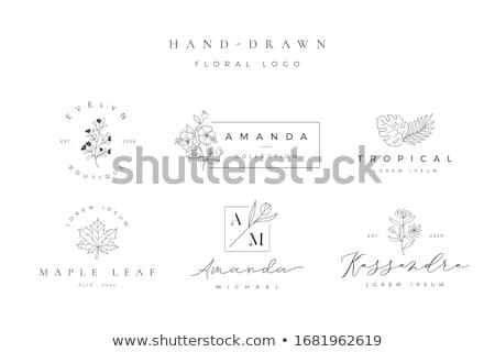 Flores logotipo estância termal salão de beleza modelo cartão de visita Foto stock © thecorner