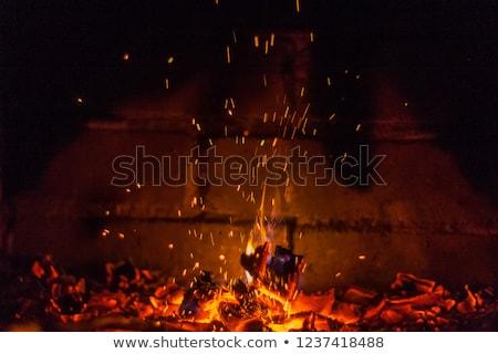 Lareira faíscas montanhas menina árvore fogo Foto stock © REDPIXEL
