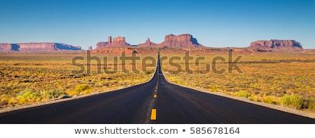 lang · straat · twee · lijnen · meervoudig · auto - stockfoto © vwalakte