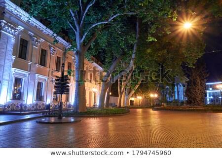 Illuminated streetlight outdoors Stock photo © Nejron
