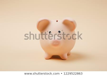 деньги Piggy Bank изолированный белый бумаги торговых Сток-фото © natika