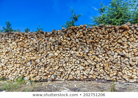 lot of wooden piles under blue clear sky Stock photo © meinzahn