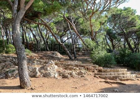 dálmata · ciudad · cielo · naturaleza · paisaje · mar - foto stock © alexandre17