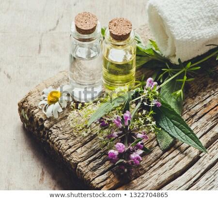 conjunto · terapia · branco · toalha - foto stock © aza