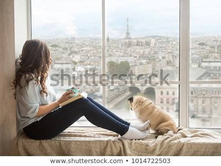 Gyönyörű fiatal nő Párizs Franciaország történelmi mosoly Stock fotó © sarymsakov