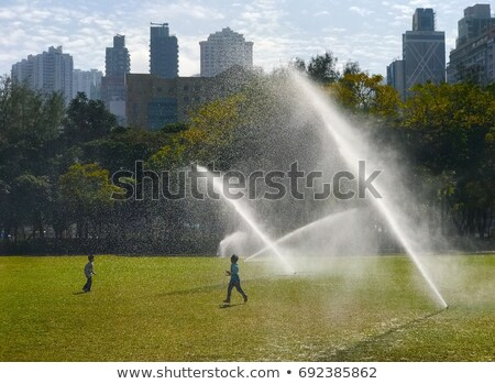 water sprinkler in the park stock photo © tang90246