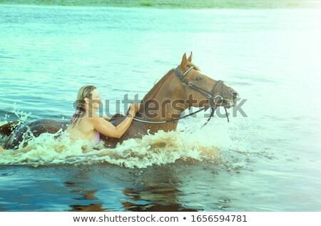 Kadın, yüzme, winth, aygır, nehirde Stok fotoğraf © Fanfo