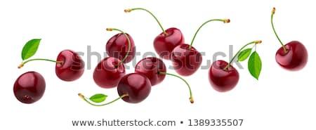 anime · illusztráció · gyümölcs · levelek · piros · cseresznye - stock fotó © tatik22