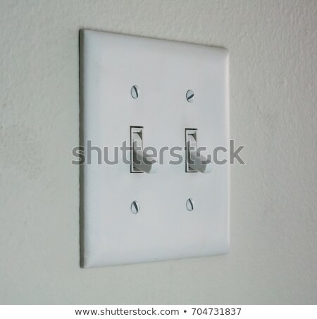 white double light switch Stock photo © ozaiachin