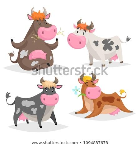 illustration of a calf lying on the grass Stock photo © artibelka