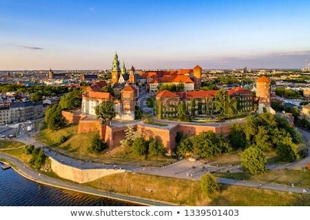real · castelo · Polônia · viajar · rio · tijolo - foto stock © benkrut