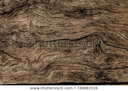 Rústico textura madera vieja azul madera Foto stock © stevanovicigor