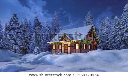 Huis verlicht nacht gebouw hout Stockfoto © haraldmuc