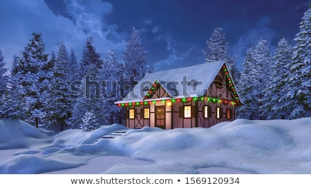 Facade of a half-timbered house illuminated at night Stock photo © haraldmuc