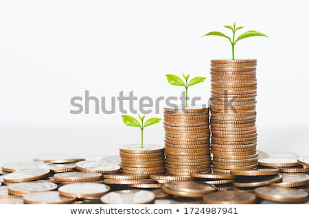 Prosperity And Savings Stock photo © Lightsource