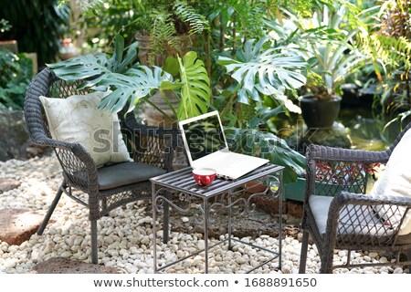 Coffee cup on garden table Stock photo © karandaev