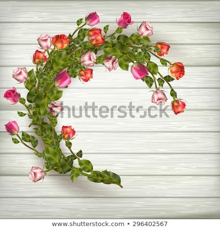 güller · çelenk · ahşap · eps · 10 · vektör - stok fotoğraf © beholdereye