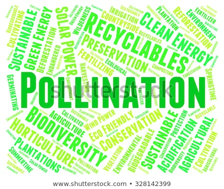 Pollination Word Means Fertilize Pollinates And Propagation Stock photo © stuartmiles
