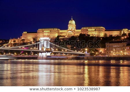 royal palace at night in budapest hungary stock photo © kayco