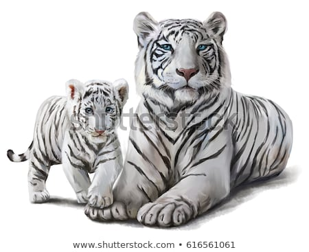 white tiger watercolor illustration stock photo © conceptcafe
