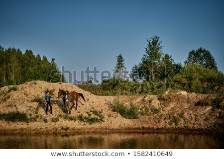 woman with two horses in a lake at sunset stock photo © courtyardpix