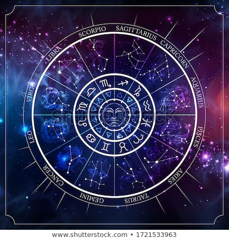 zodíaco · signos · agua · peces · signo · silueta - foto stock © cidepix