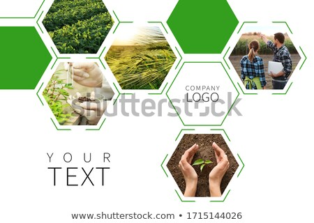 man in farming and agriculture photo collage with copy space stock photo © stevanovicigor
