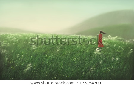 The hill of loneliness stock photo © stefanoventuri