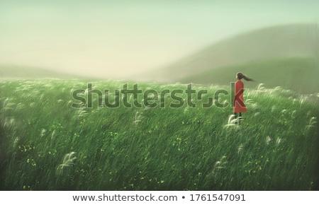 Heuvel eenzaamheid Toscane huis groene pad Stockfoto © stefanoventuri