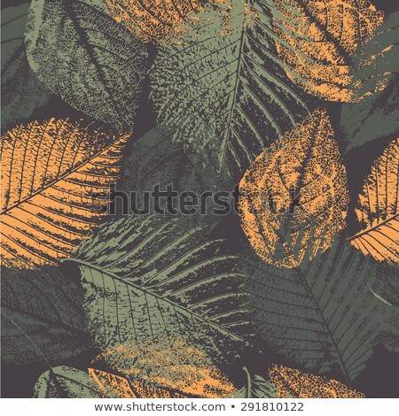 autumn floral seamless pattern fall autumn leaves nature symbol vector collection stock photo © marysan