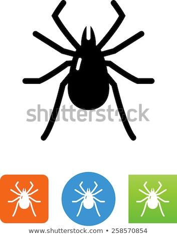 böcek · clipart · görüntü · sağlık · siyah · insan - stok fotoğraf © vectorworks51