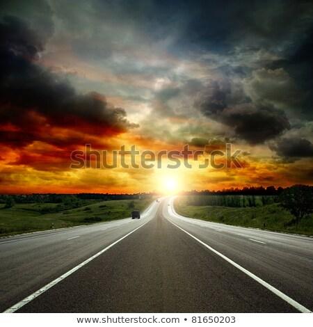 sziluettek · pitypang · szél · virág · fény · művészet - stock fotó © psychoshadow