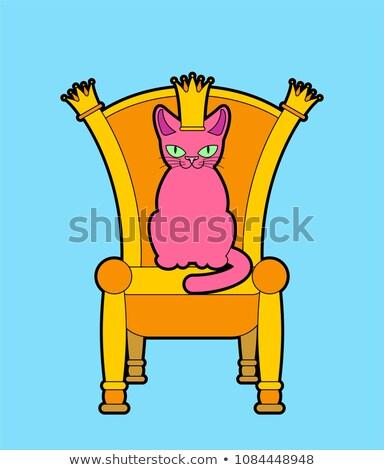 Kat troon huisdier baas koninklijk stoel Stockfoto © MaryValery