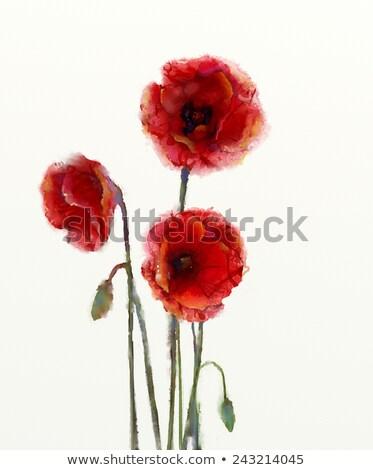 vermelho · verde · campo · borboleta · folha - foto stock © milsiart