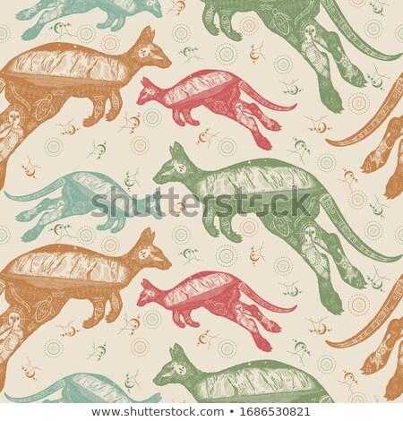 kangaroo pattern seamless australia animal background vector i stock photo © maryvalery