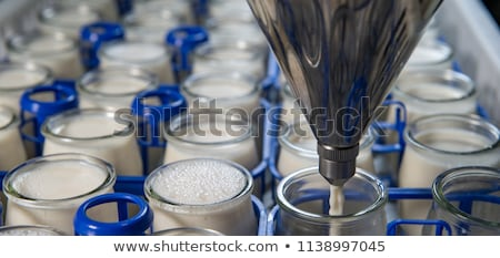 Production of yogurt in a farm, homemade cow's milk yoghurt Stock photo © FreeProd