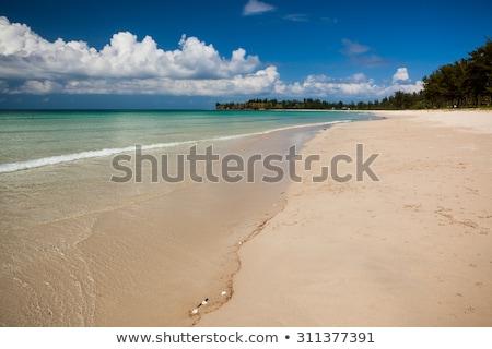 Lang zand strand tip water natuur Stockfoto © Juhku