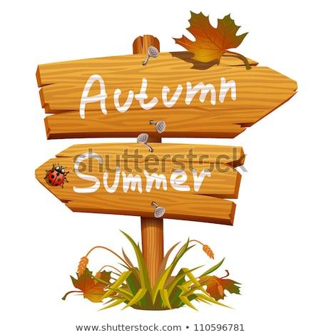 autumn wood notice Stock photo © alexaldo