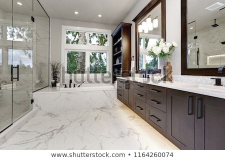 Bathroom modern interior with dark hardwood cabinets and glass door shower Stock photo © iriana88w