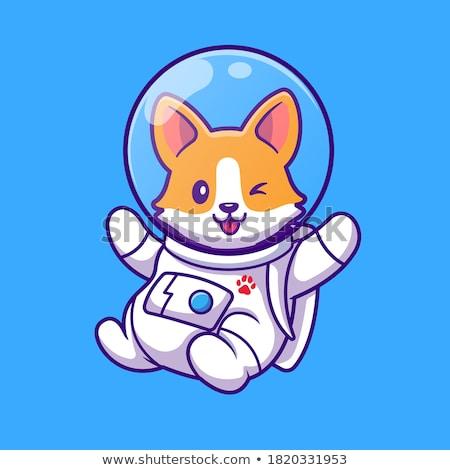 Karikatür gülen astronot köpek yavrusu Stok fotoğraf © cthoman