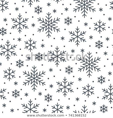 Snowfall icon flat Stock photo © smoki