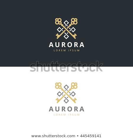 Sleutel vector logo-ontwerp element ontwerp huis Stockfoto © blaskorizov