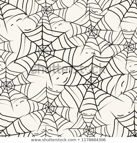 Gyűjtemény pókok minta eps 10 háttér Stock fotó © netkov1